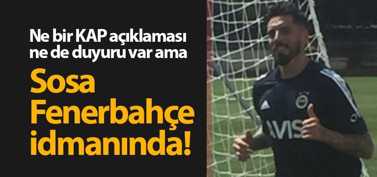 Jose Sosa Fenerbahçe idmanına çıktı